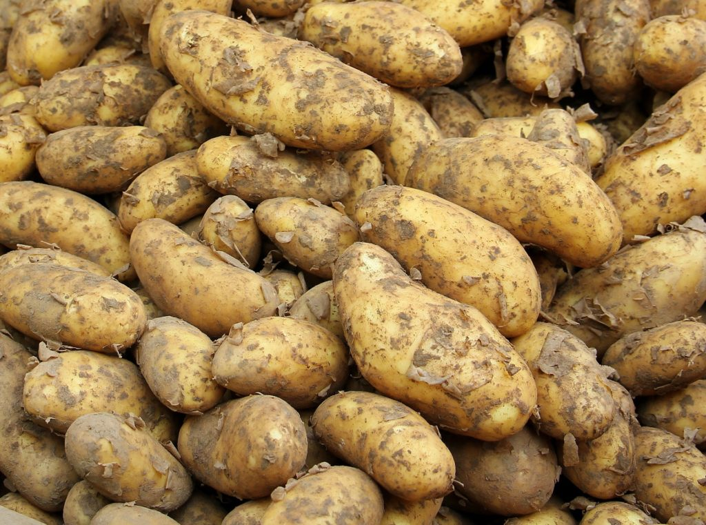 Puñado de patatas crudas